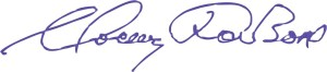 Подпись2